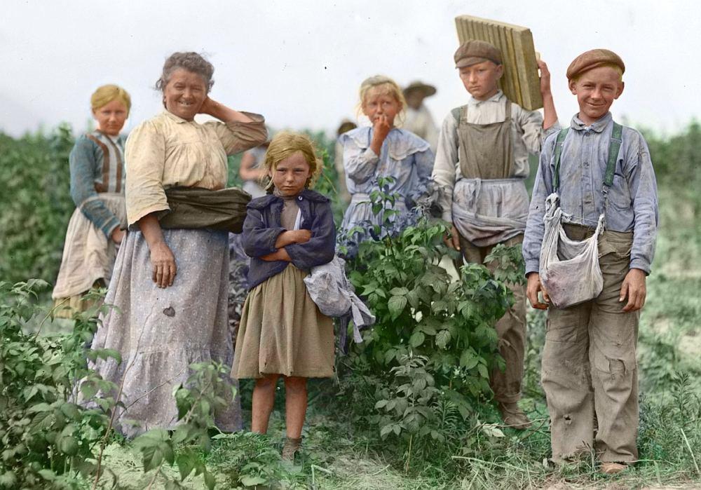 Ein altes Foto zeigt eine Familie, eine Großmutter mit Enkeln beim Beerenpflücken.